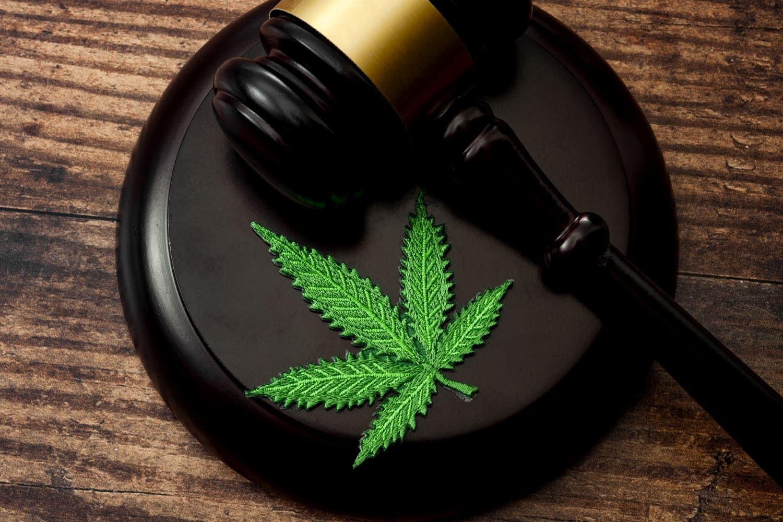 Proposición de Ley de Regulación Integral del Cannabis en Personas Adultas
