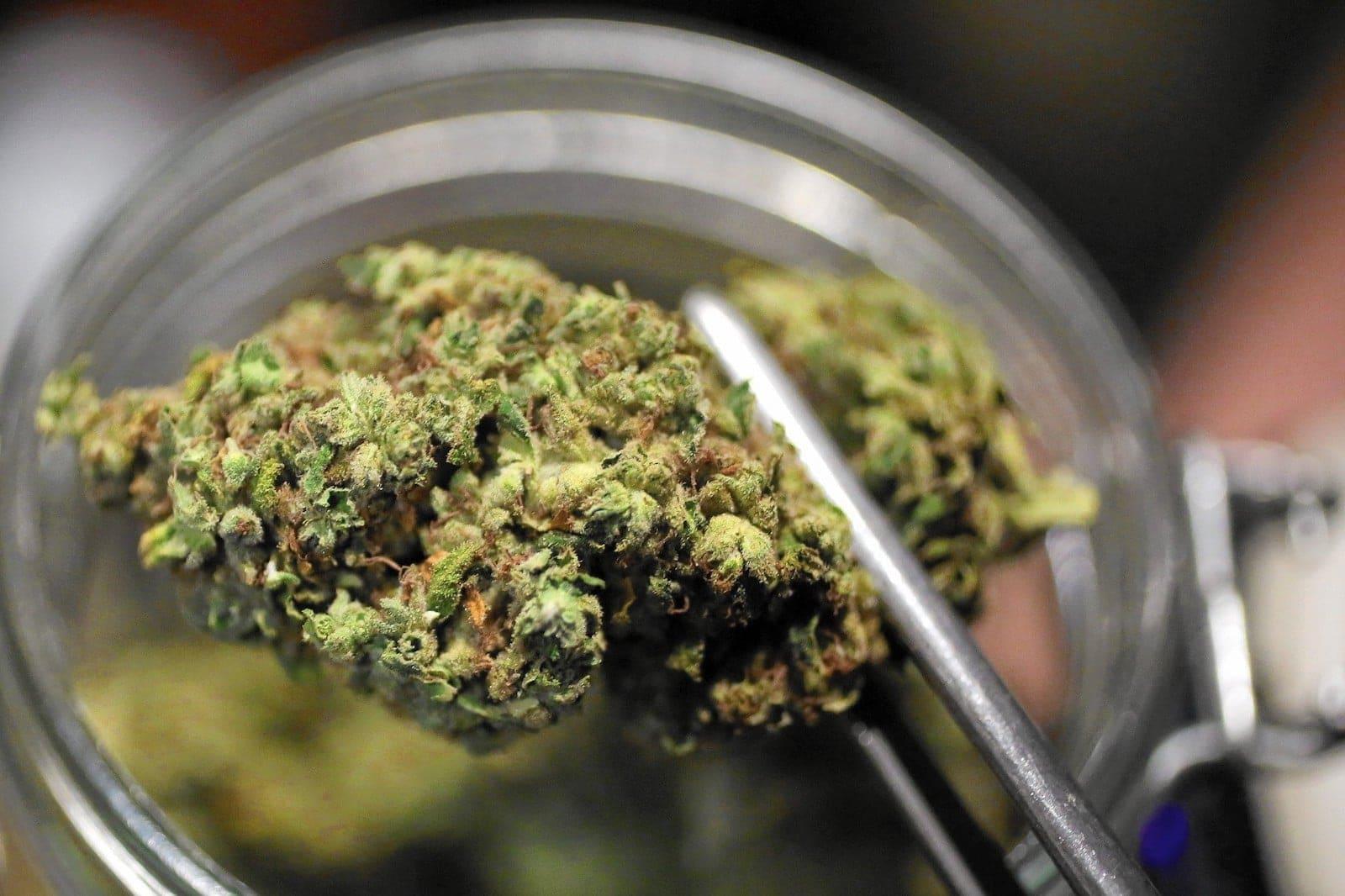 cannabis medicinal en mujeres