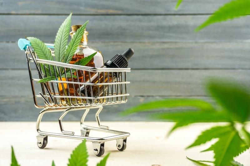 ¿Cómo iniciar un negocio de cannabis?