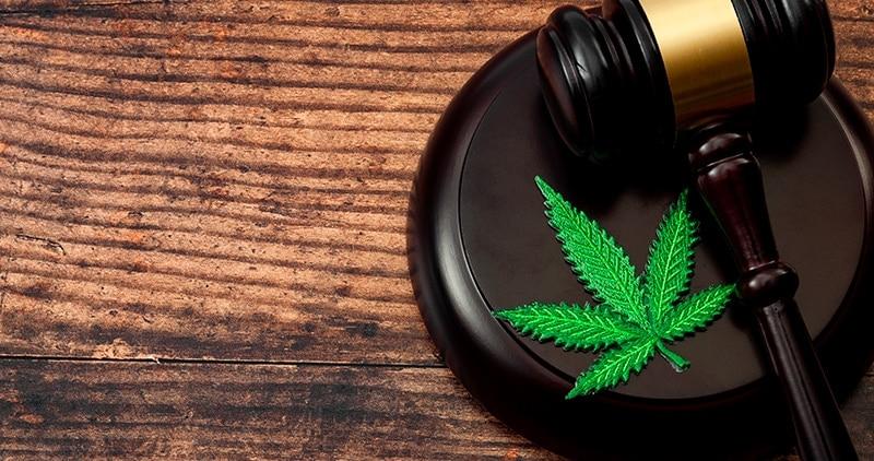 legalización del cannabis medicinal